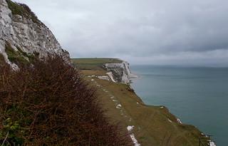 Vue depuis les White Cliffs