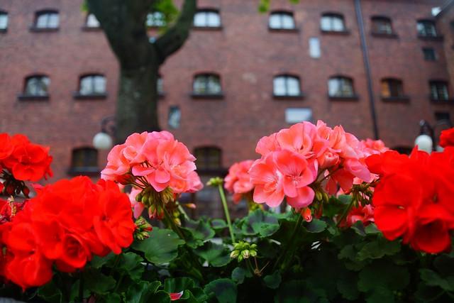 Jailyard Terrace at Hotel Katajanokka, Helsinki, Finland.