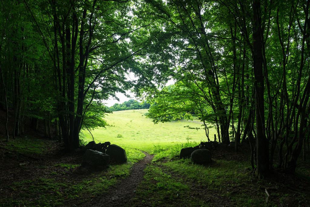 Forsemölla, Skåne