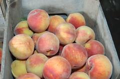 peach, produce, fruit, food, nectarine, apple,