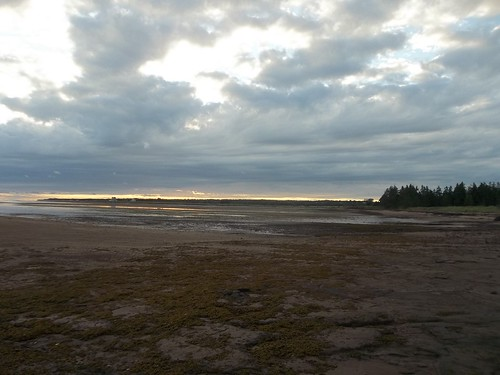 Low tide at Camp Buchan, Belfast, Prince Edward Island (6)