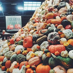 The National Heirloom Exposition. The World's Pure Food Fair! Enough said
