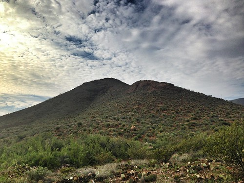 ecology outdoors hiking el paso biology naturalist desertscapes