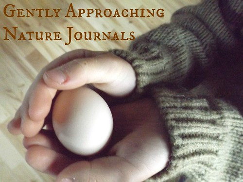a gentle approach to nature journaling