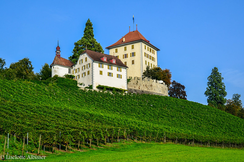 Castillo de Heidegg
