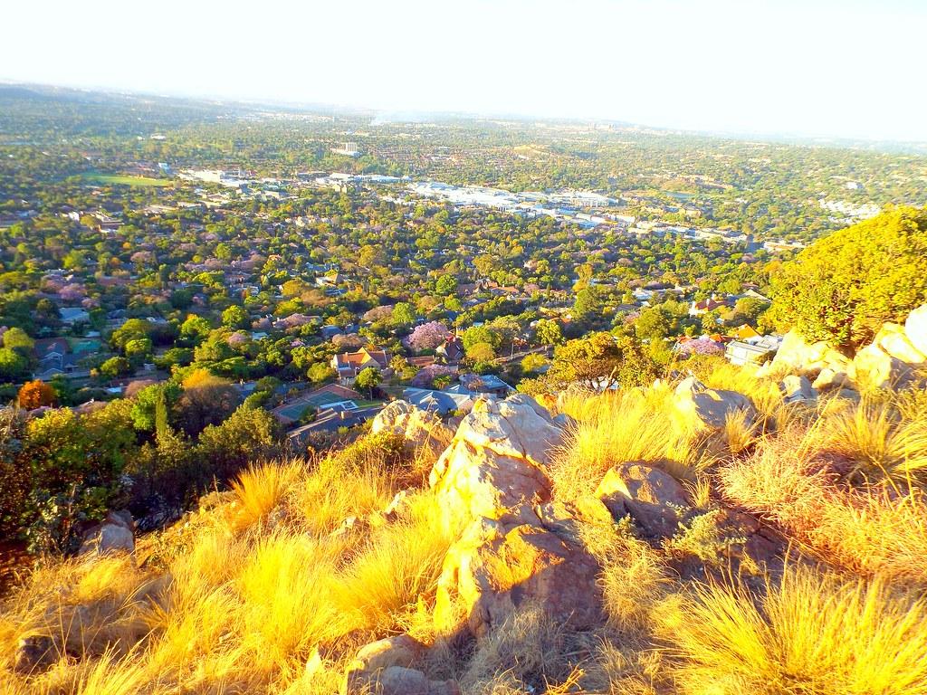 Summer on Hill