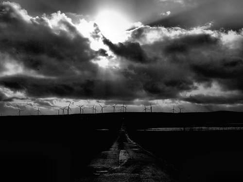 Reay Windfarm