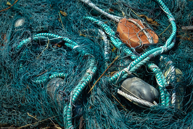 Peggy's Cove Fishing Nets