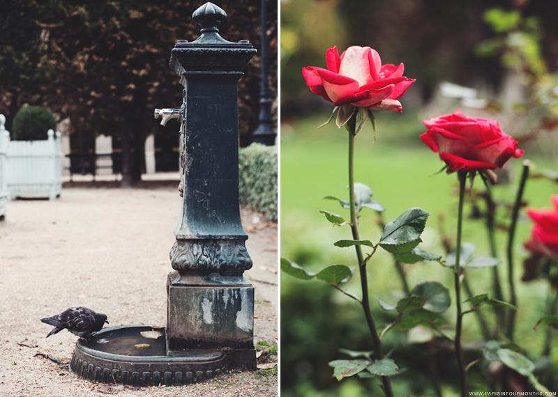 Autumn in Jardin du Palais Royal