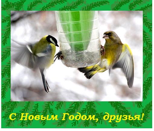 IMG_0737откр1