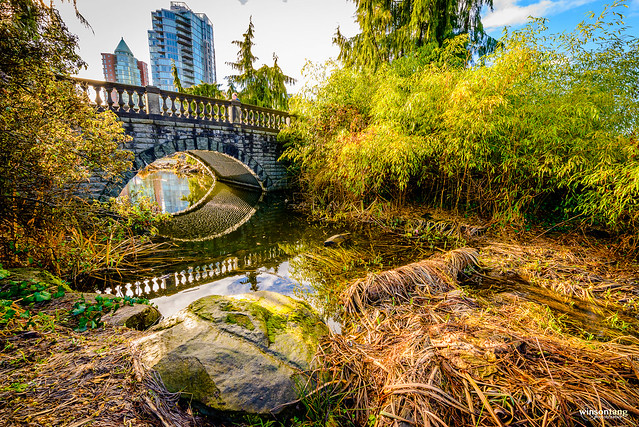 Urban Nature - Under the Bridge #Vancouver #StanleyPark