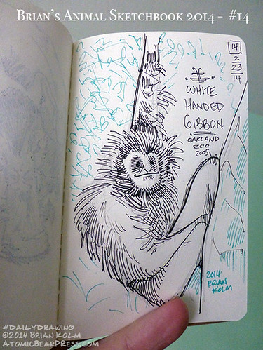 02-23-2014 #dailydrawing #animals White Handed Gibbon