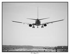 Airplane in Arlington