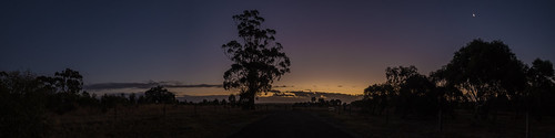 adelaide adelaidehills adl southaustralia sa australia sunset landscape photo photograph sundown night dark sky tree silhouette olympus olympusem10 olympusomd panorama pano panoramic sturtgorge park craigburn p
