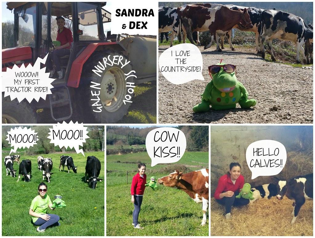 SANDRA & DEX