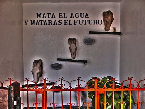 Un mensaje sensato. Moyahua, Zacatecas