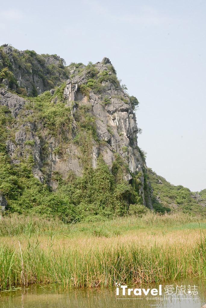 《宁平游船体验》云龙湿地自然保护区:搭乘传统手摇竹筏,欣赏黑叶猴与莲花自然资源景观。