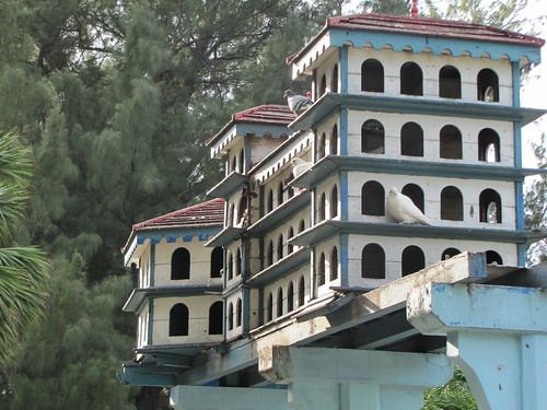 Cuba 2013 - bird mansion