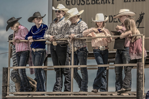 Gooseberry Lake : 4-H Rodeo 2013 :  Where the Cowgirls Are