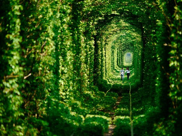 Tunnel of Love in Klevan, Ukraine.