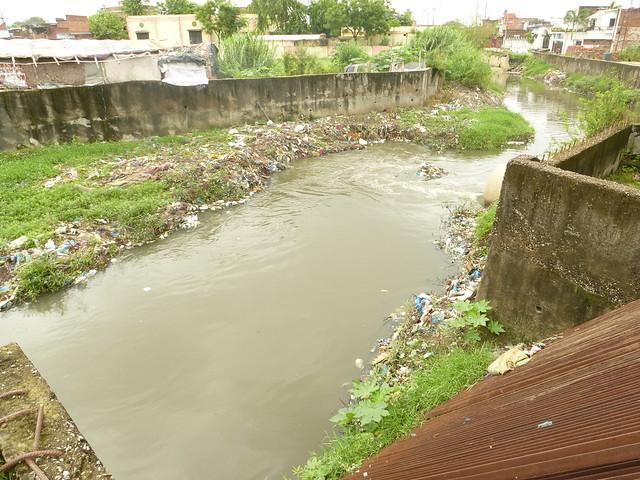 A nallah carrying sewage and trash.