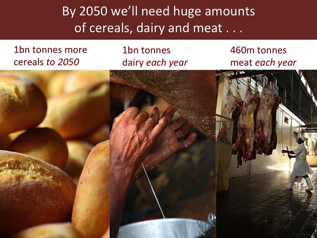 Feeding the World in 2050: Slide 4