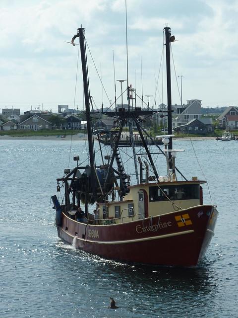 Flickr photo sharing for Fishing newport ri