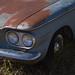 Lambrecht Chevy Auction-215