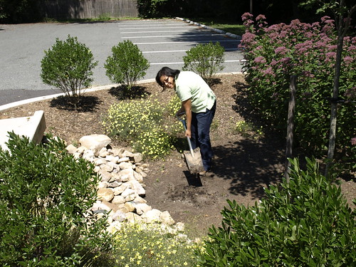 Image of a Department of Environmental Protection staff member performing maintenance on a stormwater facility.