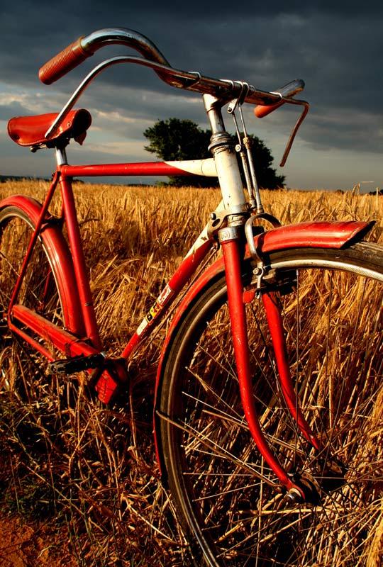 29. Bicicleta en la llanura. Autor, Zlataleta