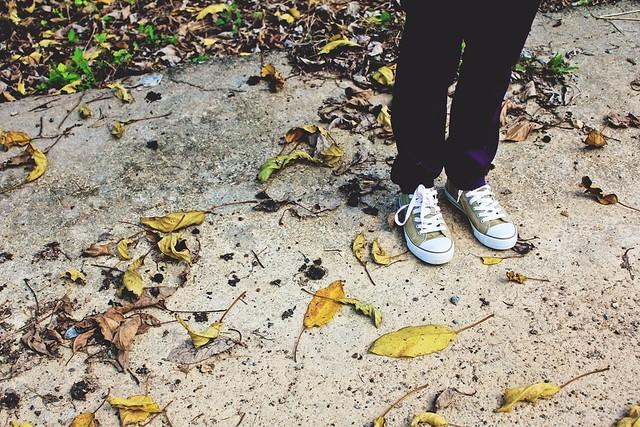 photoshot kaki