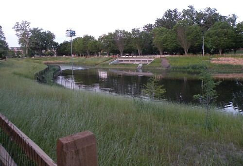 Image of the stormwater pond at Stoney Creek