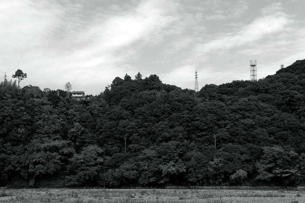 green wall|愛媛県大洲市