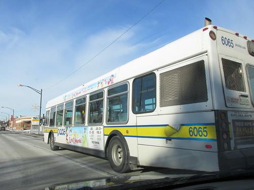 Pace bus schedule rosemont