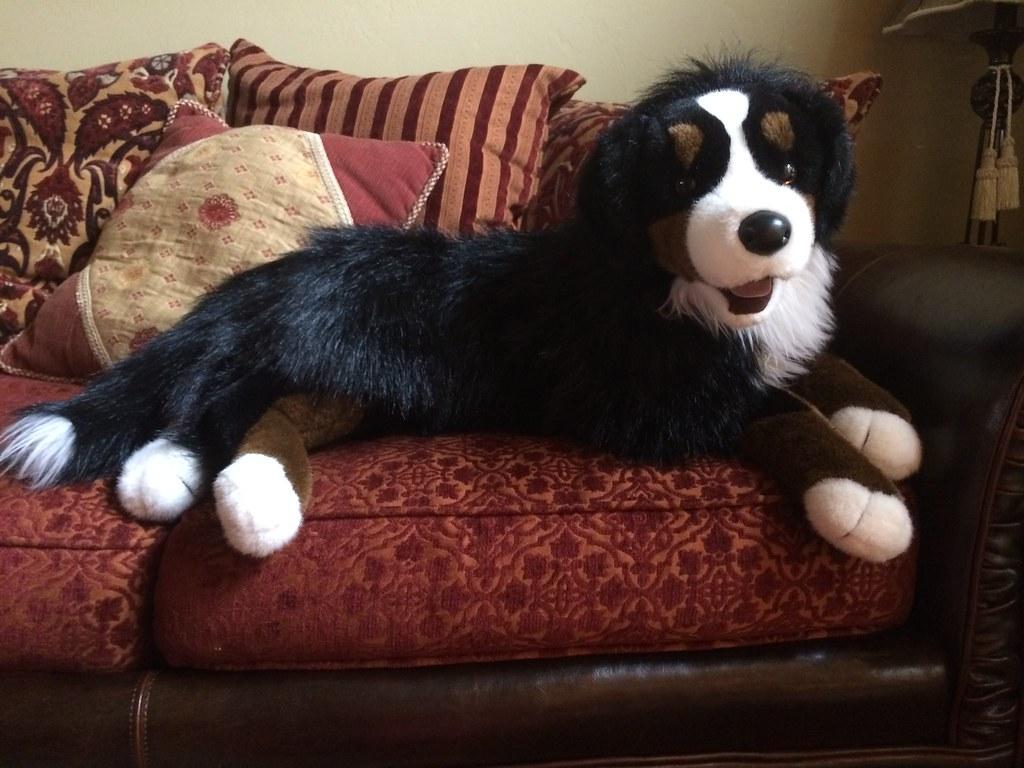 Douglas Plush Rory Bernese Mountain Dog Loverofplushies