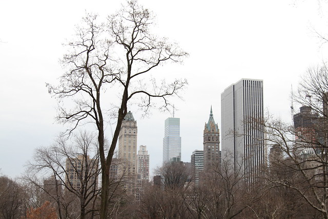 city view from Central Park
