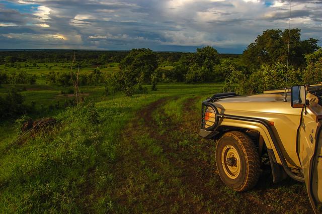 Parque nacional de Chobe. Botsuana.