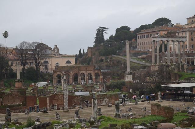 Roma 1 febbraio 2014 019