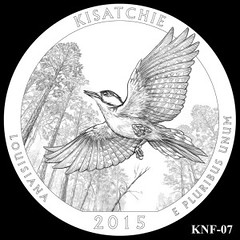 Kisatchie-National-Forest-Silver-Coin-Design-Candidate-KNF-07-300x300