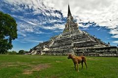 Tailandia: Ayutthaya