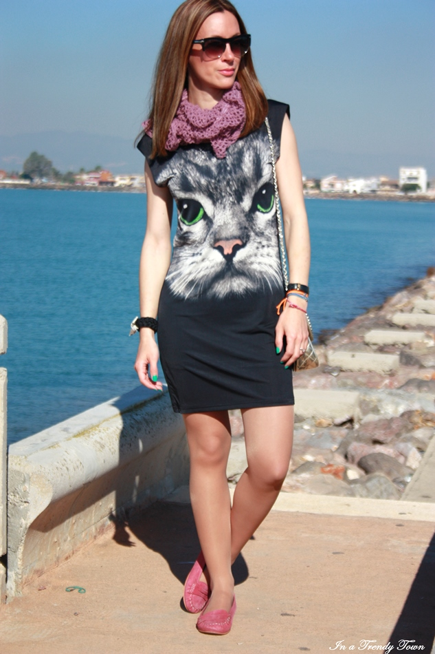 CAT OUTFIT 1 1