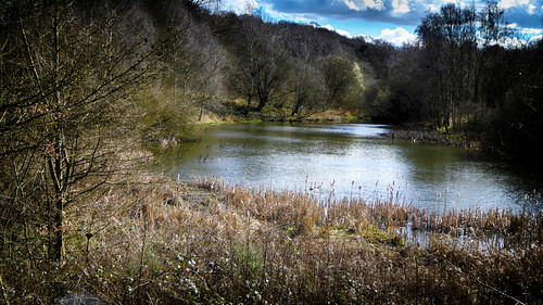 killamarsh southyorkshire woodallpond