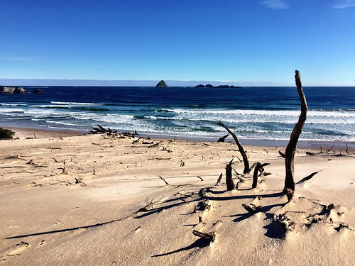 Stephens Beach. South West Tasmania.