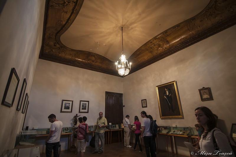 Muzeul George Enescu