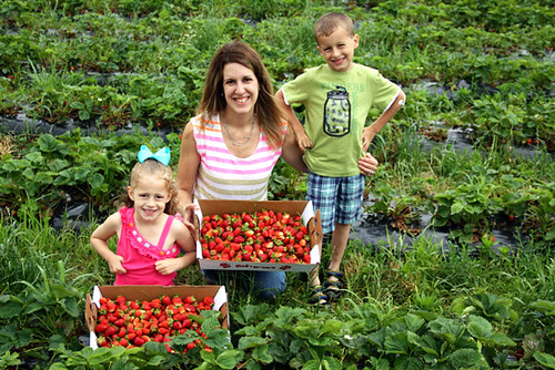 2013-Me-and-Kids-Strawberry-Picture