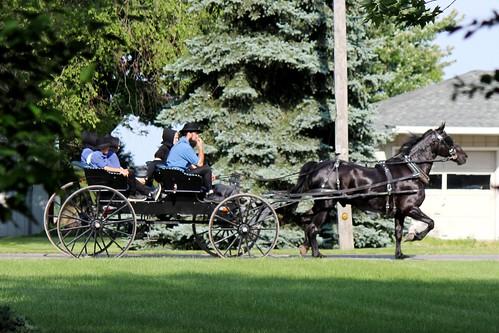 IMG_0182_Amish_Buggy