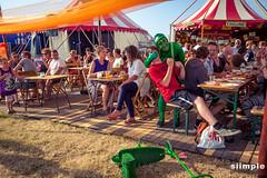 festivalopheteiland_130715_williekerkhof_264