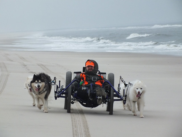 WooFDriver Event - Mushing The Beach -Assateague Island, Ocean City MD 1.14.2013