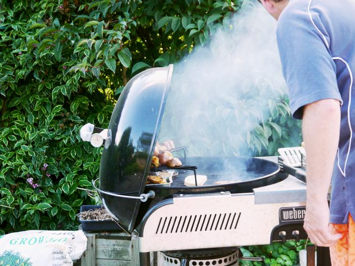 a proper barbecue 2