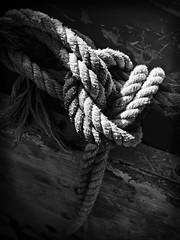 Rope knot CF002847_October_2013 B+W 12x1625%